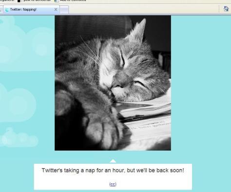 twitter-napping.jpg
